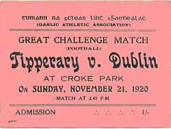 A ticket from the Bloody Sunday match, recently sold at auction. Image Source: www.thurles.info